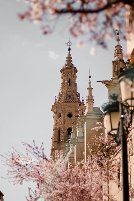 The top of the Seville Cathedral in Seville, Spain for a luxury destination wedding.